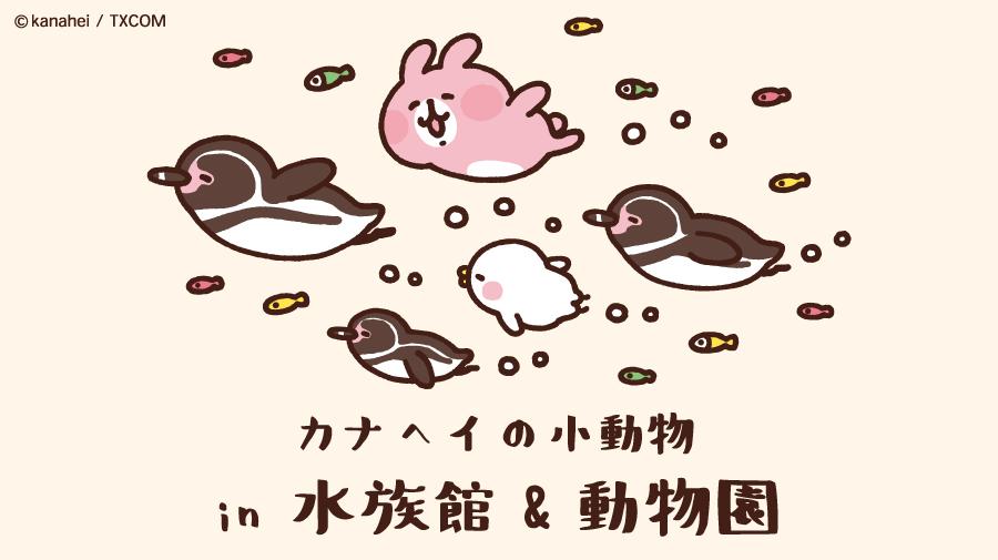 ピスケ&うさぎと水族館・動物園